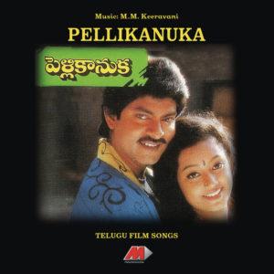 Pelli Kanuka Songs