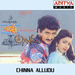 Chinna Alludu Songs