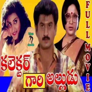 Collector Gaari Alludu Songs