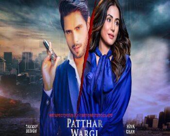 Patthar Wargi Song Download